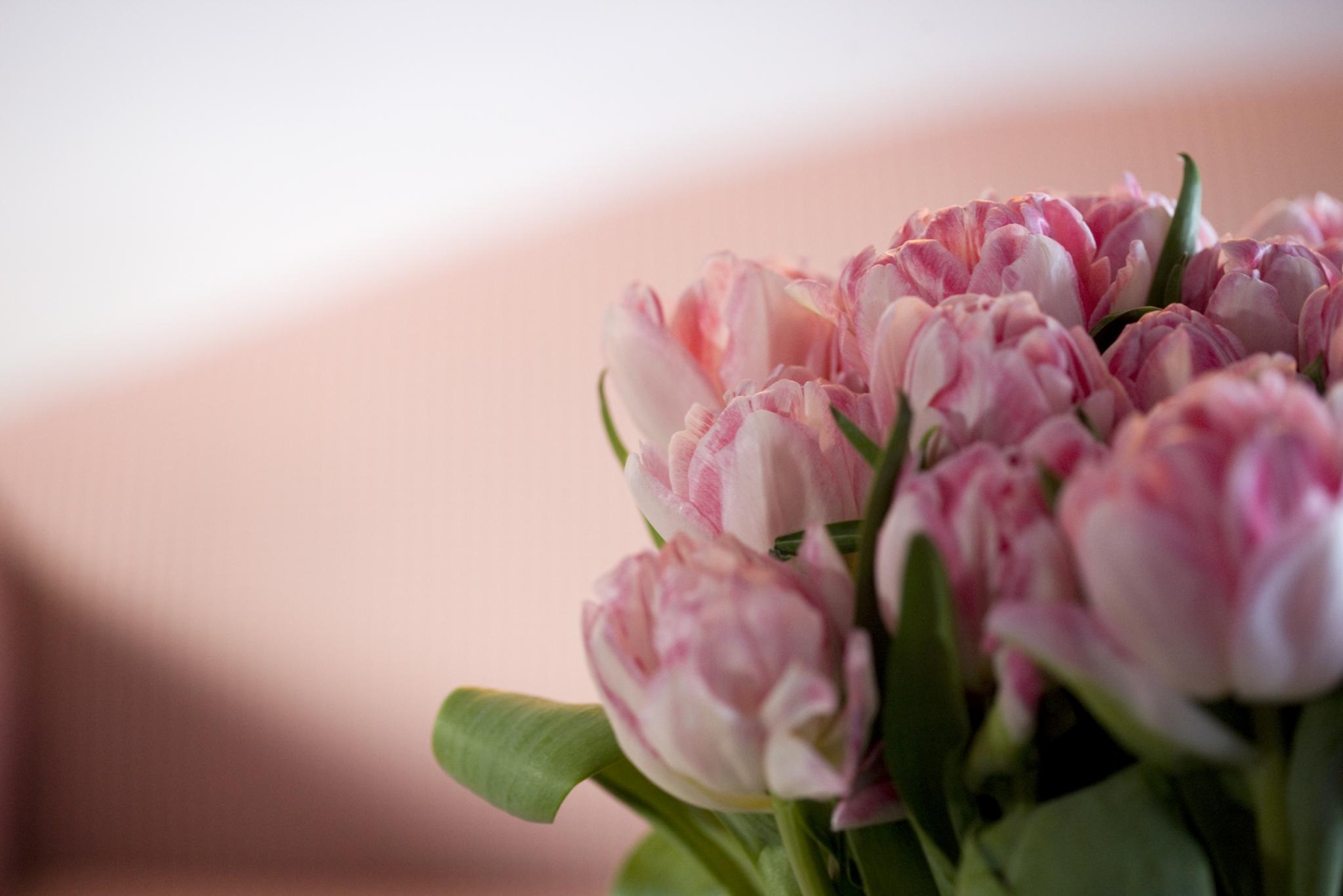 Blumen am Tisch